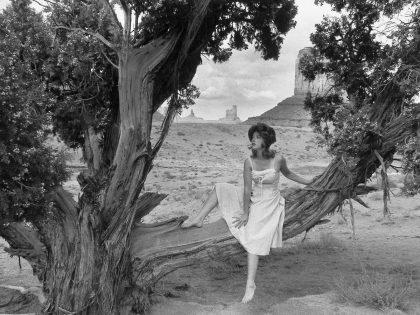 Cindy Sherman. Untitled Film Still #143, 1979.