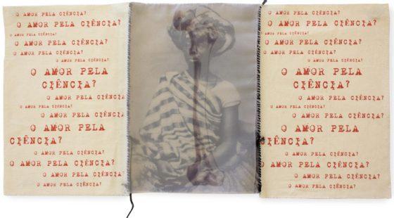Rosana Paulino